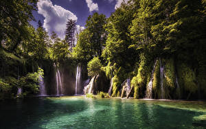Картинка Хорватия Парк Водопады Озеро Скала Дерево Plitvice Lakes National Park Природа