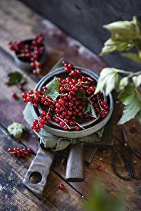 Фото Смородина Доски Красная Пища