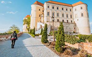 Фото Чехия Замок Дороги Уличные фонари Ель Mikulov Castle Southern Moravia Города