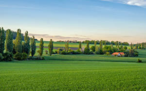 Фотографии Чехия Поля Здания Дерево Bohemian landscape Природа