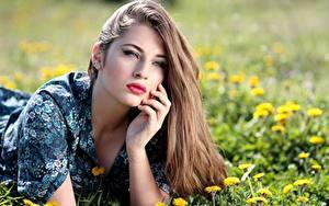 Фото Одуванчики Шатенка Лежа Рука Волосы Красивый Косметика на лице Девушки