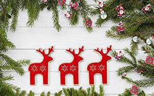 Картинки Олени Рождество Ветвь Доски