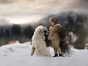 Фотография Собаки Мальчишки Снега Боке ребёнок Животные