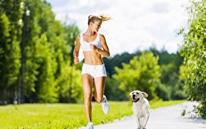 Обои Собаки Золотистый ретривер Тропы Размытый фон Бежит Блондинки Шорты спортивный Девушки