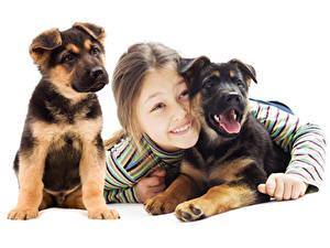 Фотографии Собака Белом фоне Девочка Щенки Смотрит ребёнок Животные