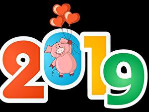 Фотография Домашняя свинья На черном фоне 2019 Воздушных шариков Сердечко