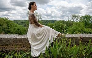 Обои Платья Сидящие Рука Спины Татуировка молодые женщины