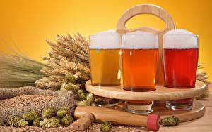 Картинка Напитки Пиво Пшеница Стакане Три Колос Продукты питания