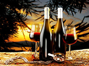 Фотография Напиток Вино Бутылка Бокалы Двое Еда
