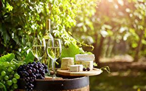 Картинки Напитки Вино Виноград Сыры Бокалы Бутылка Продукты питания
