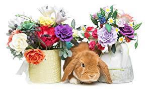 Картинки Пасха Букеты Кролик