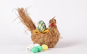 Картинка Пасха Курица Белом фоне Яйцами Еда