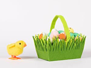 Обои для рабочего стола Пасха Птенец курицы Белым фоном Корзины Яйцами Продукты питания Животные