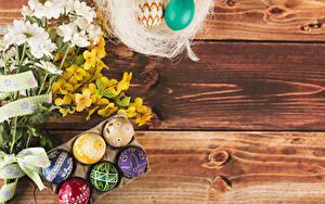 Фотографии Пасха Хризантемы Доски На ветке Яйцами Разноцветные Шаблон поздравительной открытки