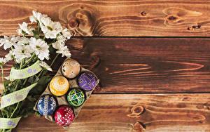 Фотография Пасха Хризантемы Доски Яйцо Дизайна Шаблон поздравительной открытки Цветы