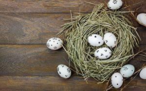 Фотография Пасха Яйцами Гнездо Доски