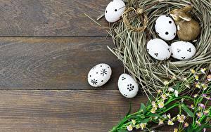 Фото Пасха Яйца Гнездо Доски Шаблон поздравительной открытки