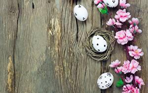 Картинки Пасха Яйца Шаблон поздравительной открытки цветок