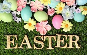 Фотографии Пасха Английская Слова Яйцо