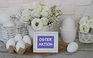 Обои Пасха Эустома Белых Яйца Слово - Надпись Немецкий Цветы Еда