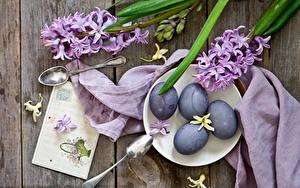 Картинка Пасха Гиацинты Яйцо Ложки цветок