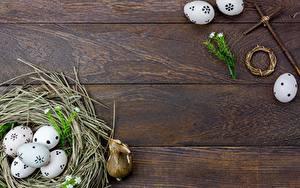 Картинки Пасха Гнезда Доски Яйцами Шаблон поздравительной открытки