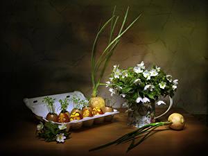 Обои Пасха Лук репчатый Натюрморт Ветреница Яйцо Пища цветок Цветы