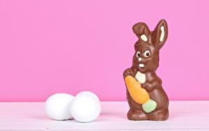 Фотография Пасха Кролик Шоколад Яйца Яйцо