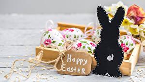 Фотографии Пасха Кролик Яйцо Слова Английская