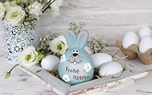 Картинки Пасха Кролик Лизантус Яйцо Слова Немецкий Пища