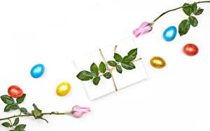 Фото Пасха Розы Белом фоне Подарков Яйцами Разноцветные Цветы Еда