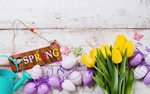 Фото Пасха Весенние Тюльпан Яйцо Английский Текст Цветы
