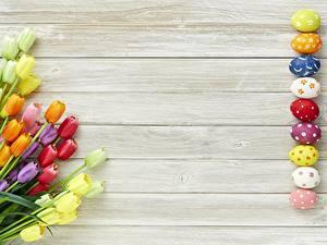 Обои Пасха Тюльпан Яйцами Доски Шаблон поздравительной открытки Цветы