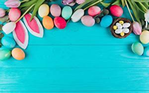 Картинки Пасха Тюльпаны Шаблон поздравительной открытки Яиц Цветной фон цветок