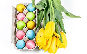 Фото Пасха Тюльпан Белом фоне Желтая Яйцо Разноцветные цветок Еда
