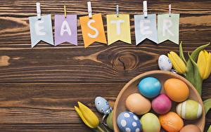 Обои Пасха Тюльпан Доски Слова Английская Яйцо Разноцветные Цветы