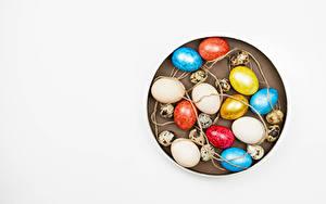 Фотографии Пасха Белом фоне Яйцо Разноцветные Шаблон поздравительной открытки цветок
