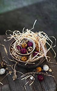 Фото Пасха Доски Солома Яйцо Разноцветные Продукты питания