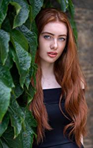 Обои для рабочего стола Рыжая Волос Листья Смотрит Emilia молодая женщина