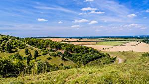 Картинки Англия Поля Небо Холмов Kingsclere Природа