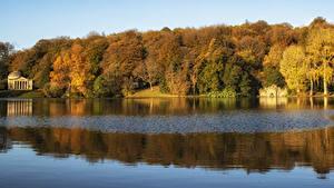 Картинка Англия Леса Речка Осень Wiltshire Природа