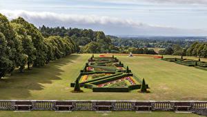 Фото Англия Сады Дизайн Газоне Кустов Дерева Забора Cliveden Garden Природа