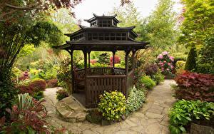 Фотографии Англия Сады Кусты Скамейка Walsall Garden Природа