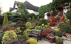 Фотография Англия Сады Кусты Скамейка Дизайна Walsall Garden Природа