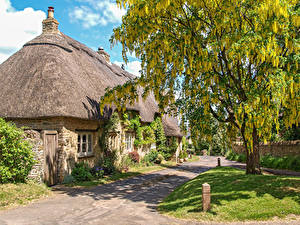Картинки Англия Дома Цветущие деревья Поселок Great Rollright, Oxfordshire