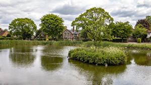 Фото Англия Дома Пруд Деревня Деревья Tylers Green Природа