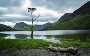 Картинка Англия Парки Гора Озеро Деревьев Lake District, Cumbria