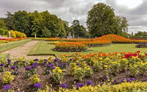 Обои Англия Парк Бархатцы Георгины Дизайна Газоне Waddesdon Manor gardens Природа