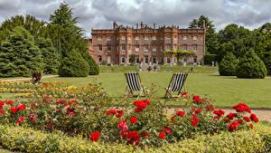 Картинки Англия Мак Парки Дома Розы Дизайн Кресло Кусты Газоне Hughenden Manor Park Природа Цветы