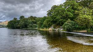 Картинка Англия Реки Побережье Кустов Деревьев Grassmere Природа